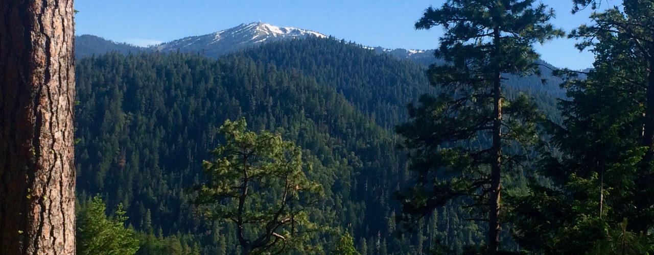 Mt Ashland to Ashland Descent (run/hike)