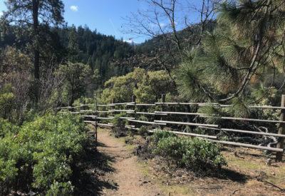 Witzend Trail