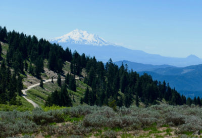 Mt Ashland to town via Time Warp, Marty's, Caterpillar,  Lizard, and Jabberwocky